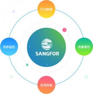 深信服SG-1000-E600上网优化网关