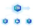 深信服EDR端点安全软件V3.0-100点套餐